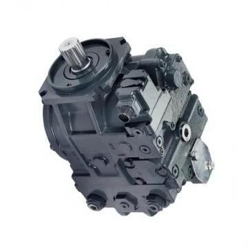 YUKEN PV2R4-136-L-RAA-4222 PV2R Single pompe à palettes