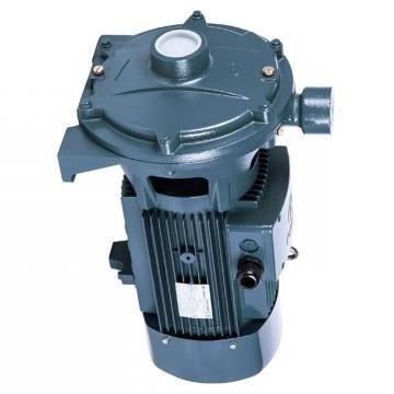 Vickers PV063R1L1A4NFR1+PGP505A0080CA1 PV 196 pompe à piston