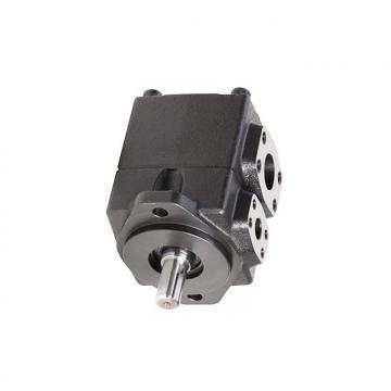 YUKEN PV2R2-65-L-RAA-4222 PV2R Single pompe à palettes