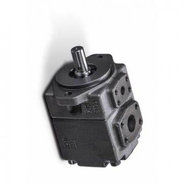 YUKEN PV2R2-59-L-RAB-4222 PV2R Single pompe à palettes