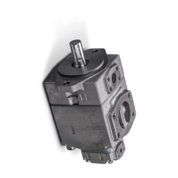YUKEN PV2R14-14-184-F-RAAA-31 Double pompe à palettes
