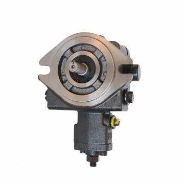 Vickers PV063R1K1T1NFRZ+PVAC2PCMNSJW35 PV 196 pompe à piston