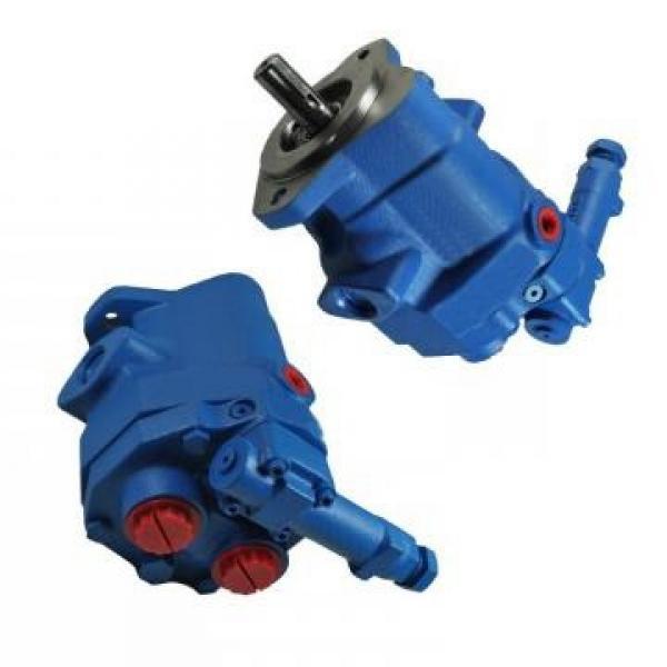 Vickers PV063R1K1T1NSCZ+PVAC1ECMNSJW35 PV 196 pompe à piston #2 image