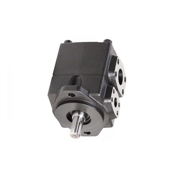 YUKEN PV2R4-184-F-RAB-4222 PV2R Single pompe à palettes #2 image