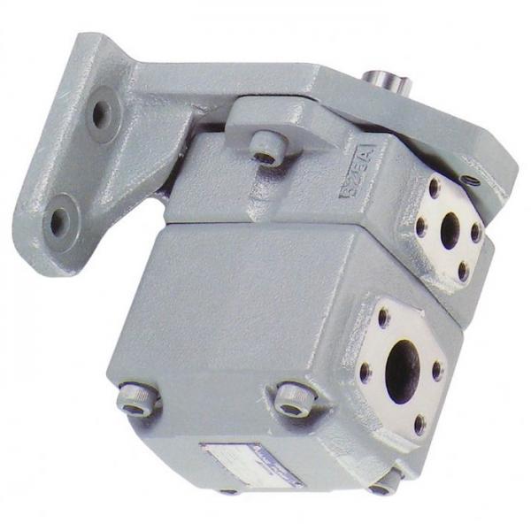 YUKEN PV2R2-53-L-RAB-4222 PV2R Single pompe à palettes #2 image