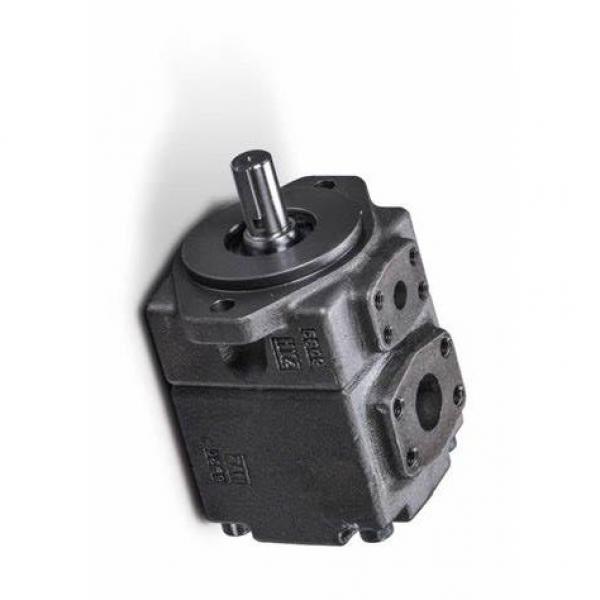 YUKEN PV2R4-237-F-RAB-4222 PV2R Single pompe à palettes #1 image