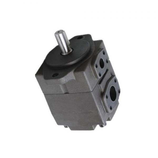 YUKEN PV2R4-200-L-LAB-4222 PV2R Single pompe à palettes #1 image