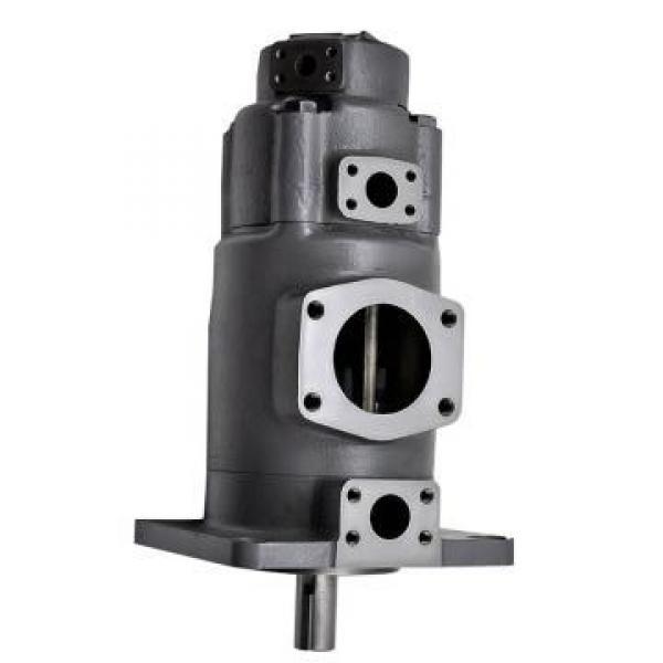YUKEN PV2R33-52-60-F-RAAA-31 Double pompe à palettes #1 image