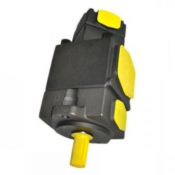 YUKEN PV2R12-10-33-L-RAA-40 Double pompe à palettes #2 image