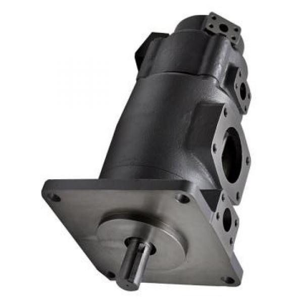 YUKEN PV2R14-17-136-F-RAAA-31 Double pompe à palettes #2 image