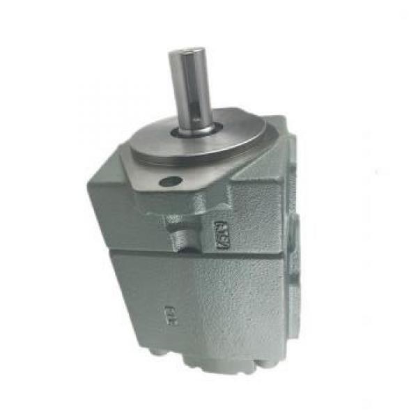 YUKEN PV2R14-25-184-F-RAAA-31 Double pompe à palettes #1 image