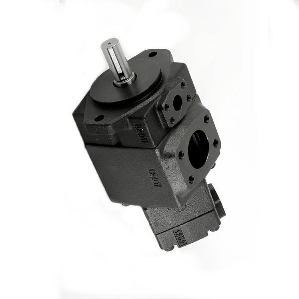 YUKEN PV2R33-52-60-F-RAAA-31 Double pompe à palettes #3 image