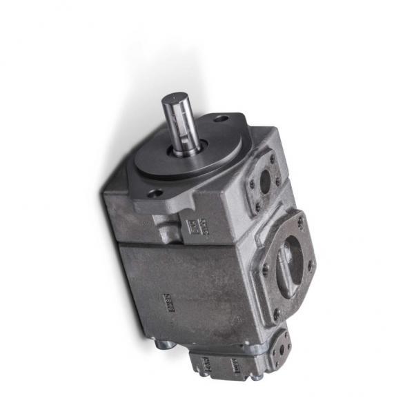 YUKEN PV2R12-19-53-L-RAA-40 Double pompe à palettes #3 image
