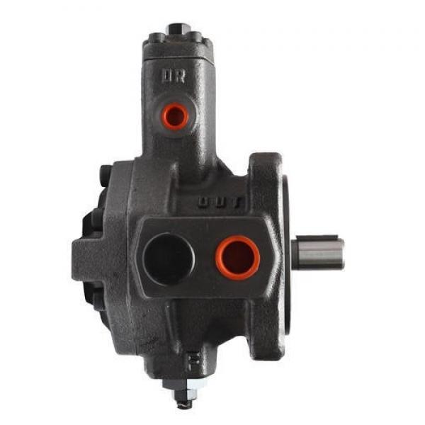 YUKEN PV2R12-19-65-L-RAA-40 Double pompe à palettes #2 image