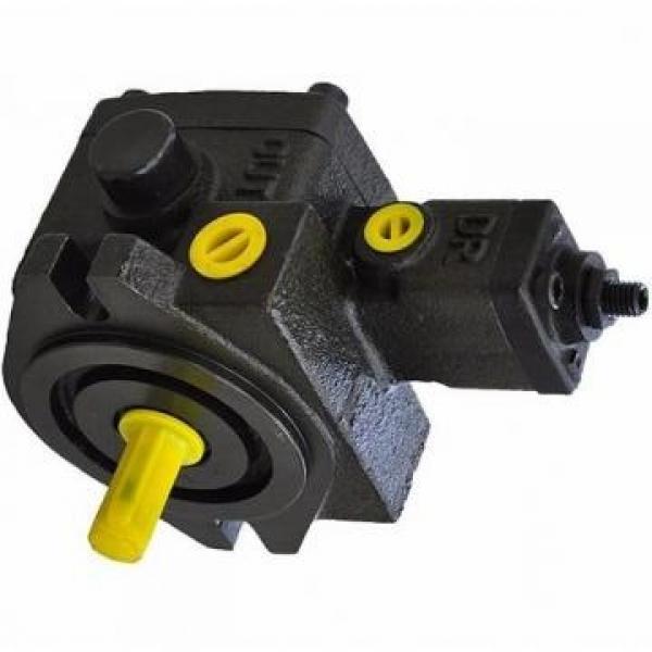 Vickers PV063R1K4T1NFR14211 PV 196 pompe à piston #3 image