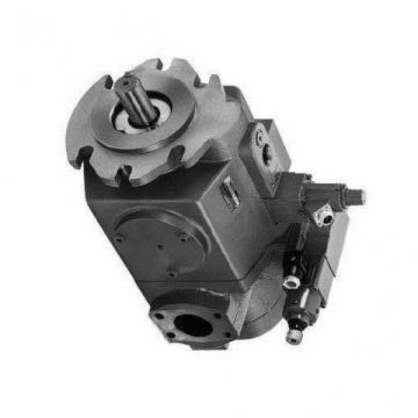Vickers PV063R1K4J3NFRC+PV016R1L1T1NMM PV 196 pompe à piston #1 image