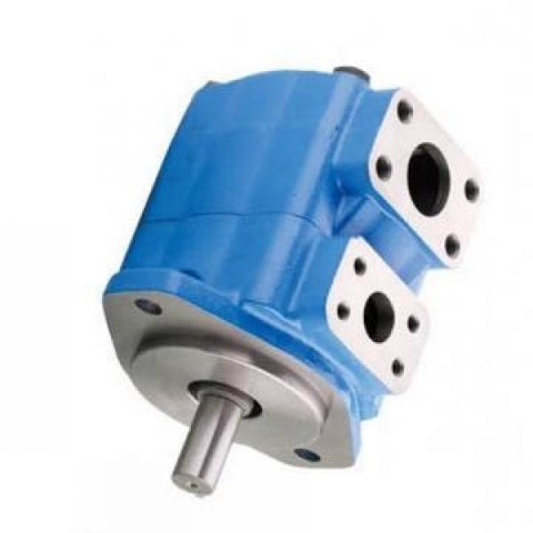 Vickers PV063R1K1T1NSCZ+PVAC1ECMNSJW35 PV 196 pompe à piston #1 image