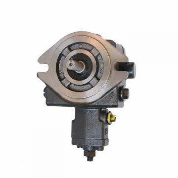 Vickers PV063R9K1T1NFWSK01564210 PV 196 pompe à piston #3 image